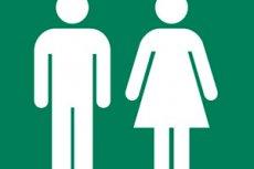 Rückenschmerzen Nach Stuhlgang Und Urinieren Kompetent über